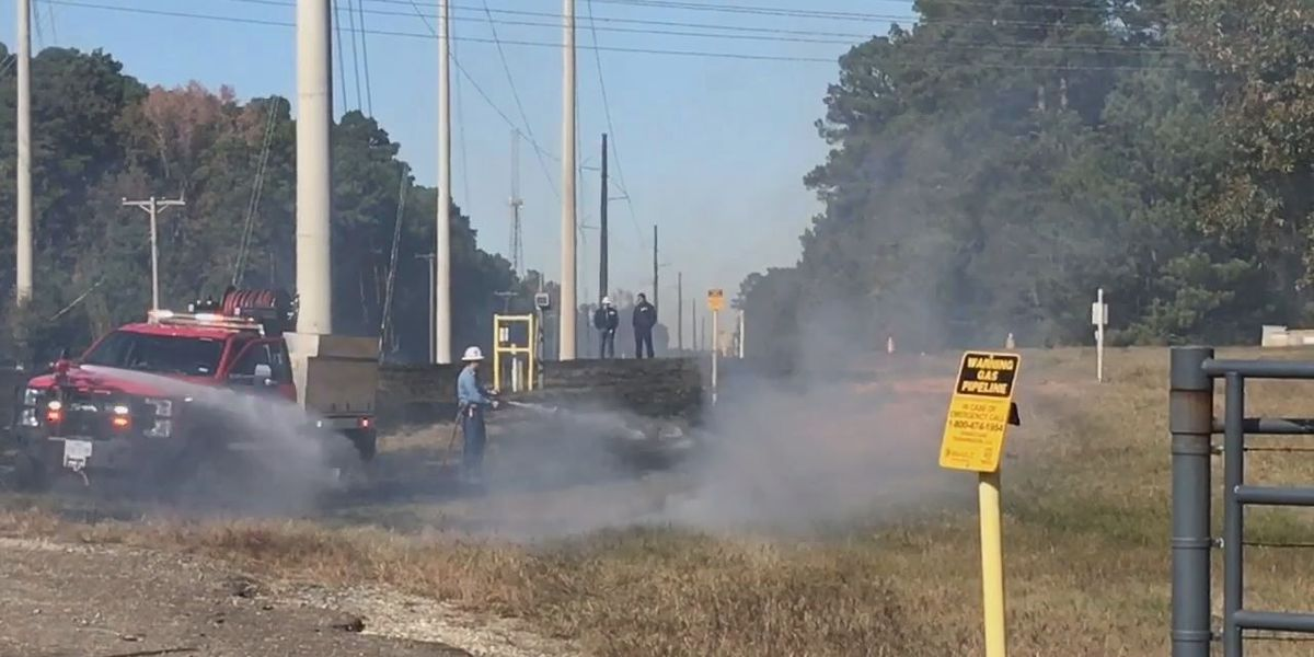 WEBXTRA: Crews respond to grass fire near Eastman chemical plant in Longview