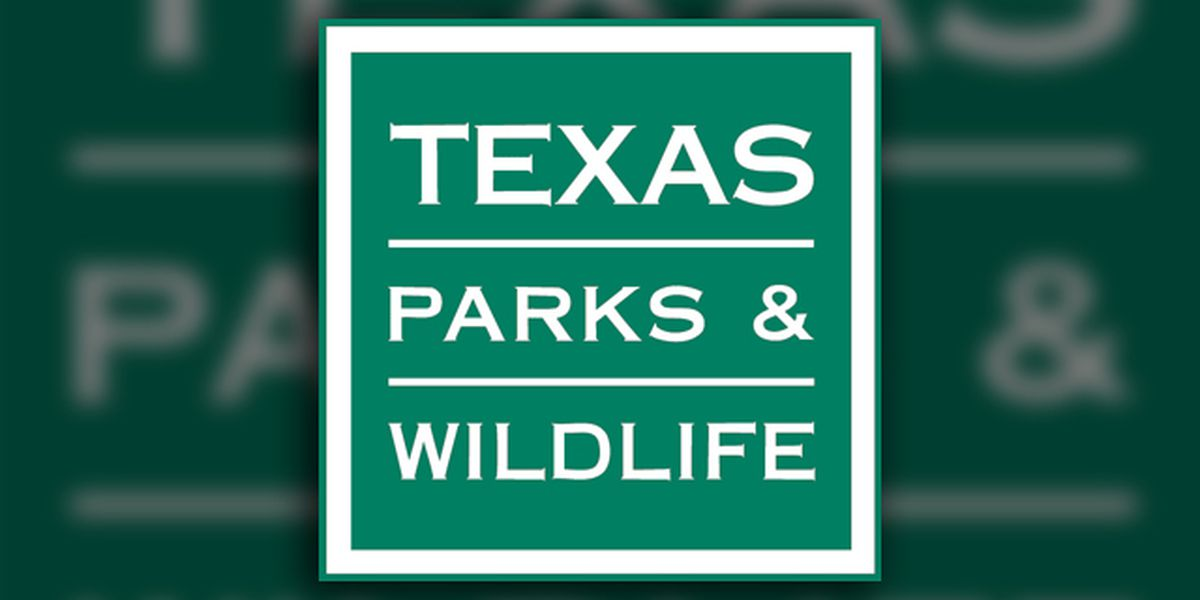 3 Texas Parks and Wildlife staffers killed, pilot injured in helicopter crash