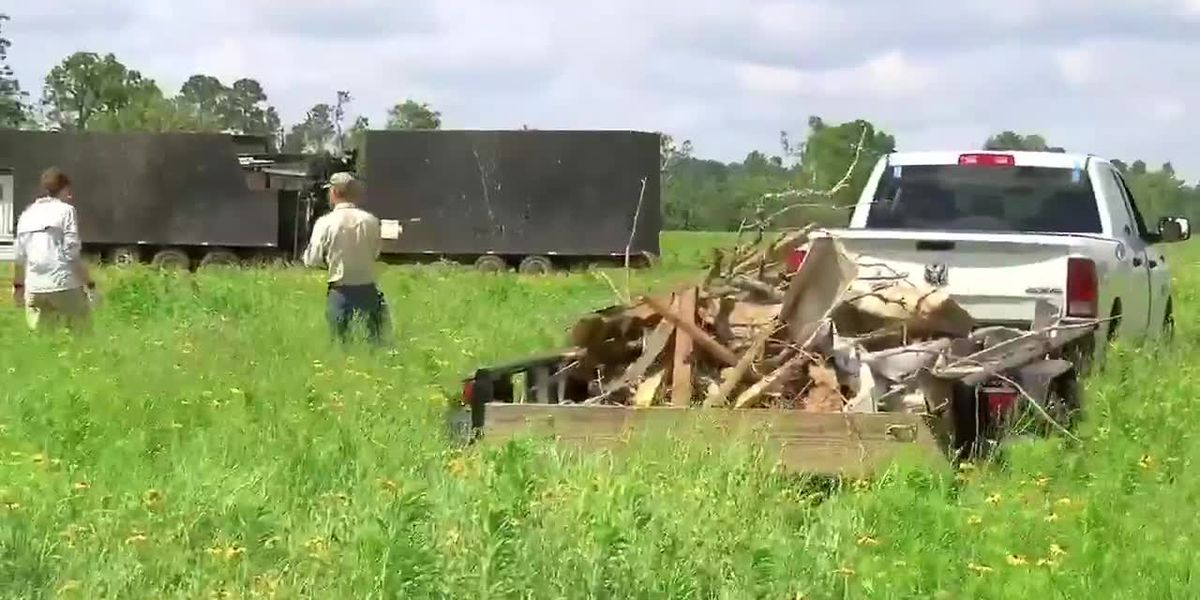 Volunteers needed as cleanup continues at Caddo Mounds State Historic Site