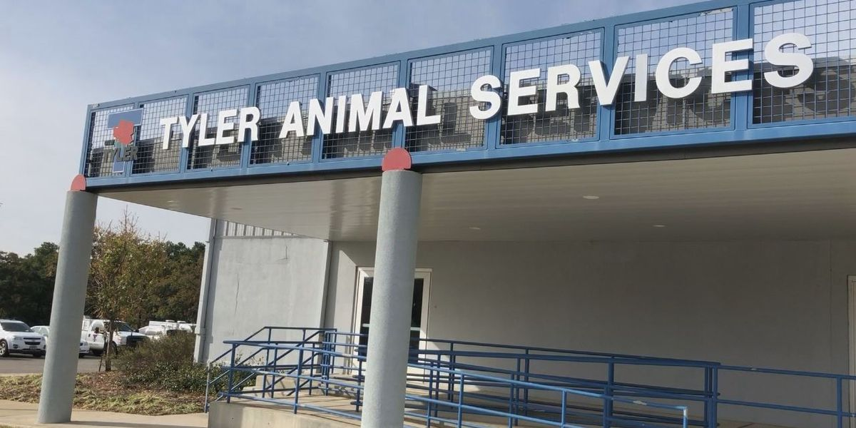 WEBXTRA: Tyler City Council amends animal cruelty ordinance