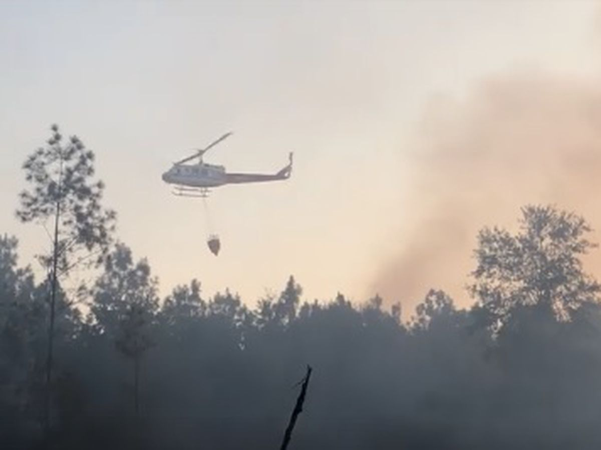 Texas Forest Service, volunteer firefighters have wildland fire contained near Big Sandy