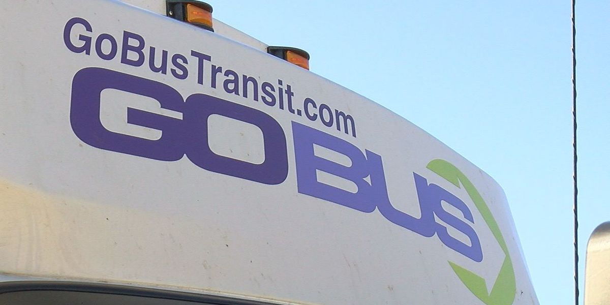 GoBus pilot program offers expanded services in Wood County