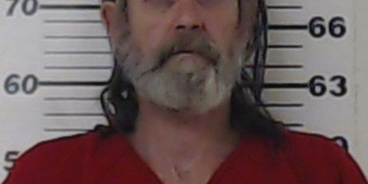 Man arrested during traffic stop for meth, handgun in Henderson County
