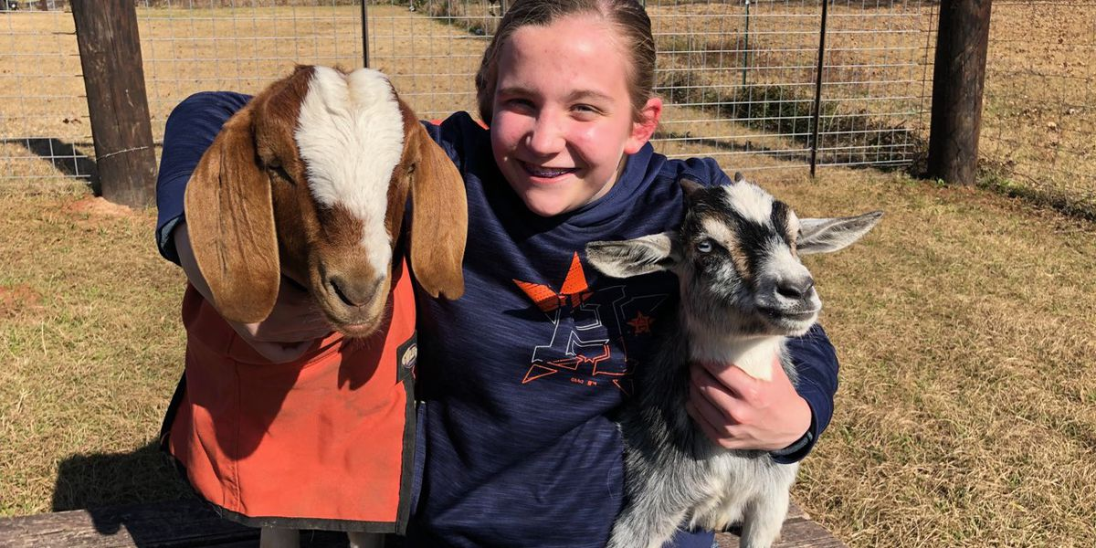 East Texas Ag News: Lauren Boulware to show her first meat goat at the Angelina County Fair