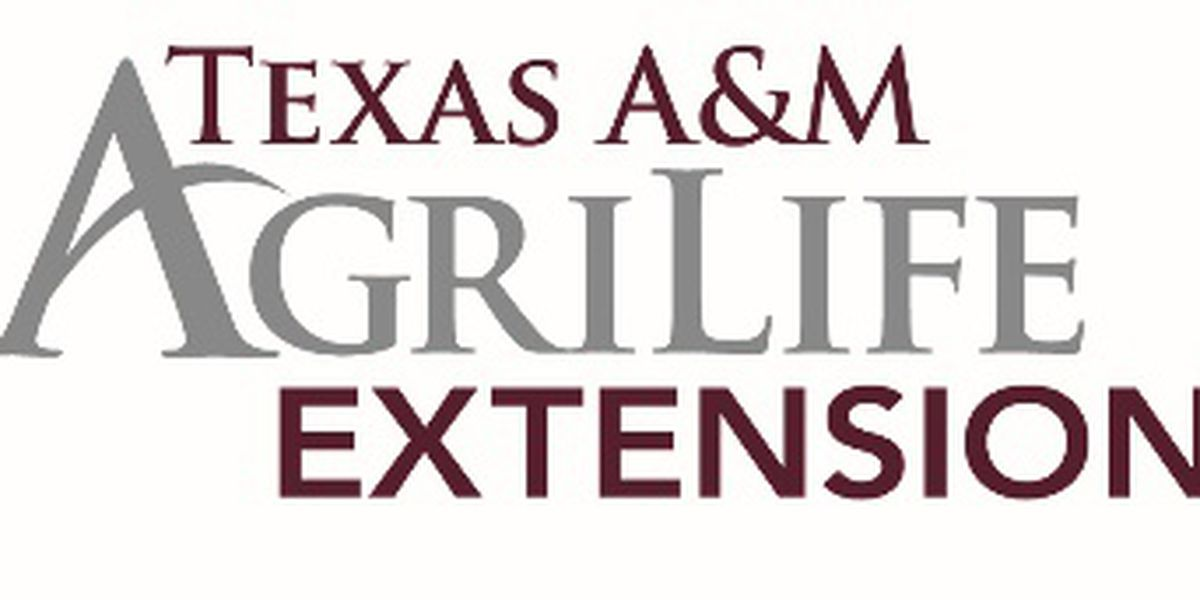 Texas A&M Agrilife Extension services hosting training program
