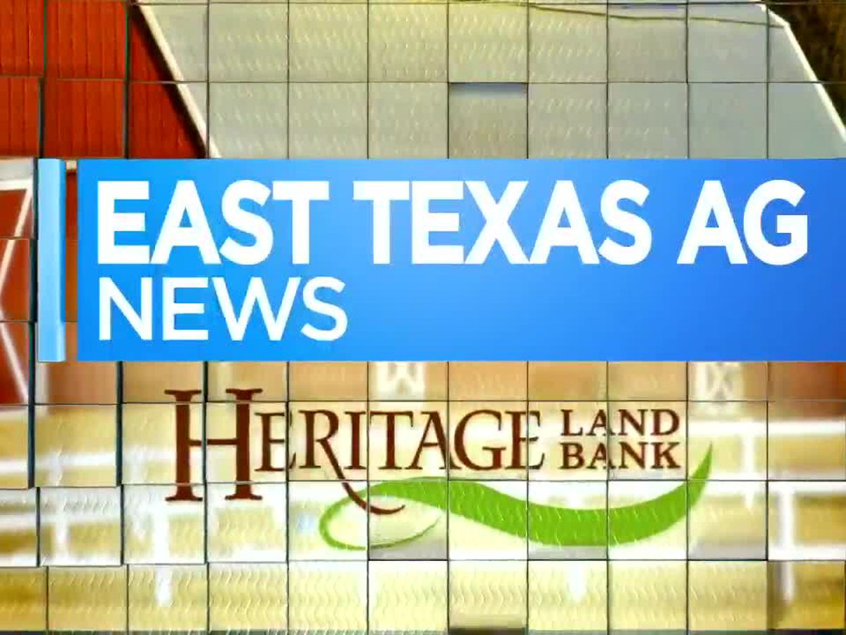 East Texas Ag News: Why it's good to know the size of your farm pond