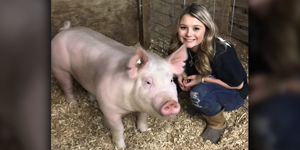 Jentrie Eldridge carries on family's hog tradition at Angelina County Fair