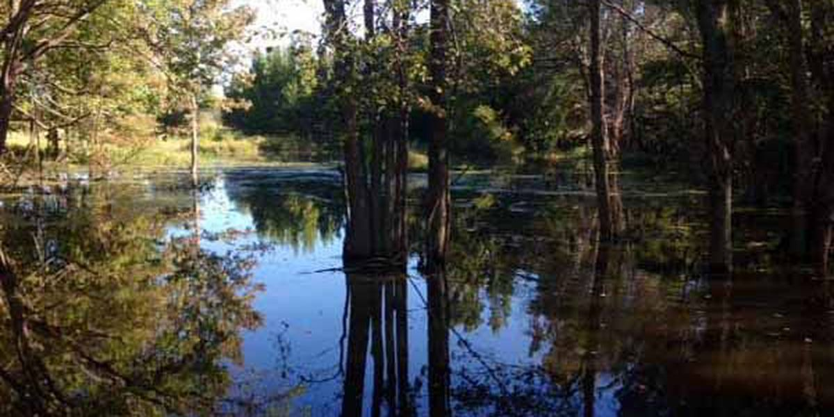 Mineola residents oppose proposed concrete plant near nature preserve
