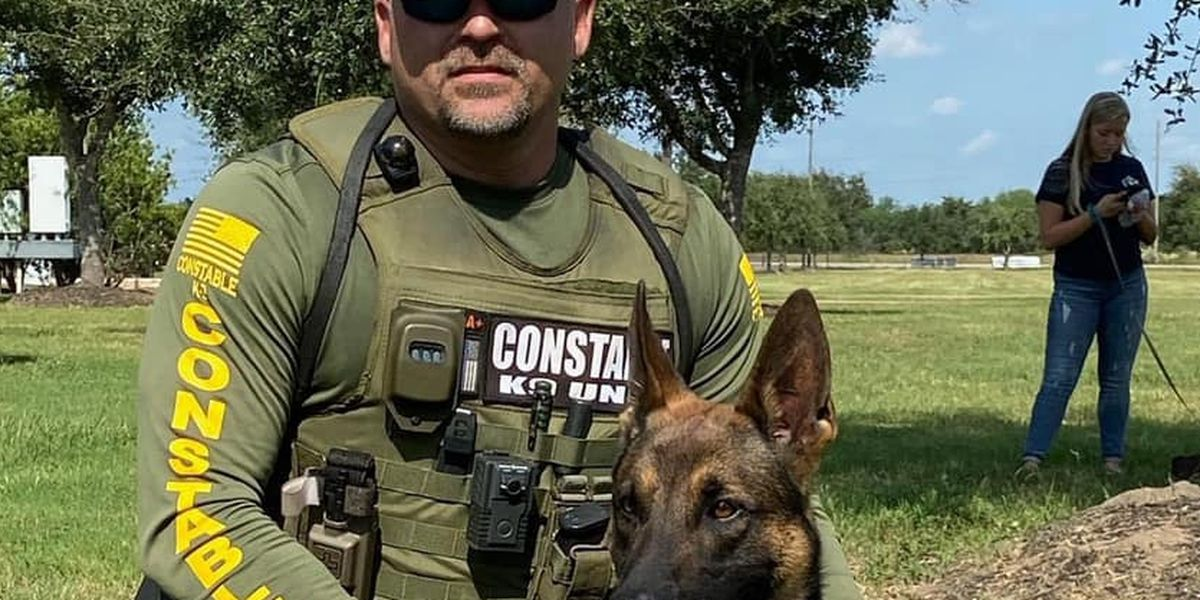 Wood County K9, handler lead joint tactical training exercise