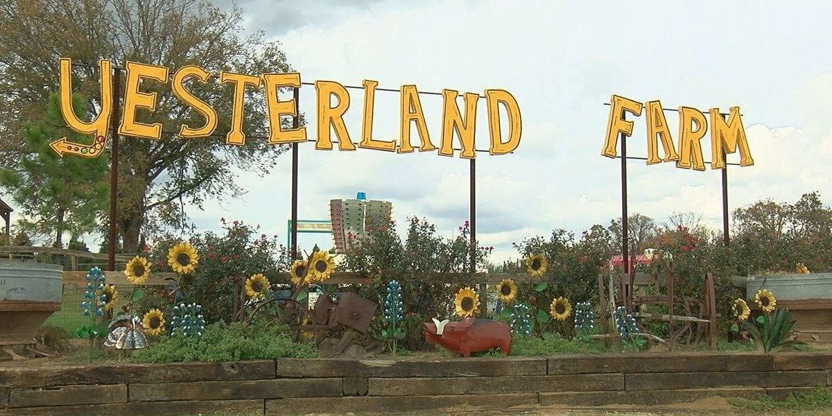 Yesterland Farm thankful to be open this holiday season
