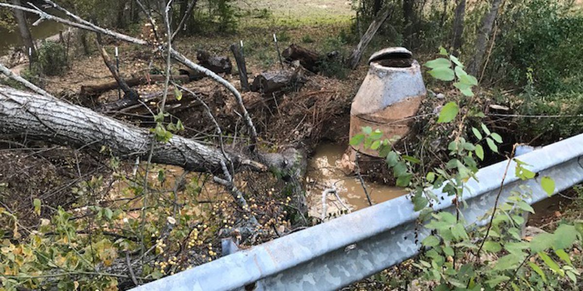 Black Fork Creek area potentially affected by 100,000 gallons spilled sewage