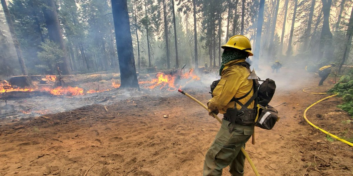 Nacogdoches firefighters helping combat wildfires in California