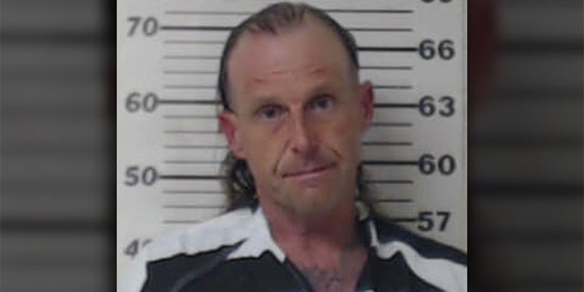 Henderson County Sheriff's Office: Traffic stop near Eustace resulted in felony drug arrest