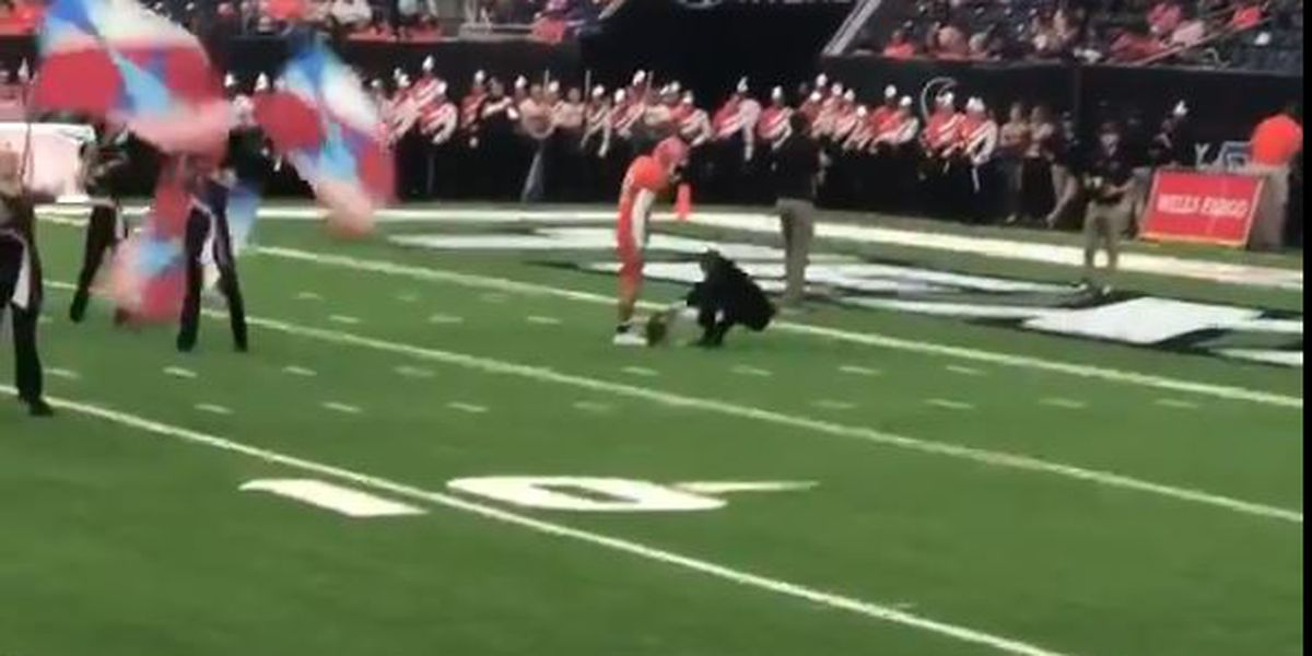 VIRAL VIDEO: Sam Houston player shoves SFA associate band director during halftime