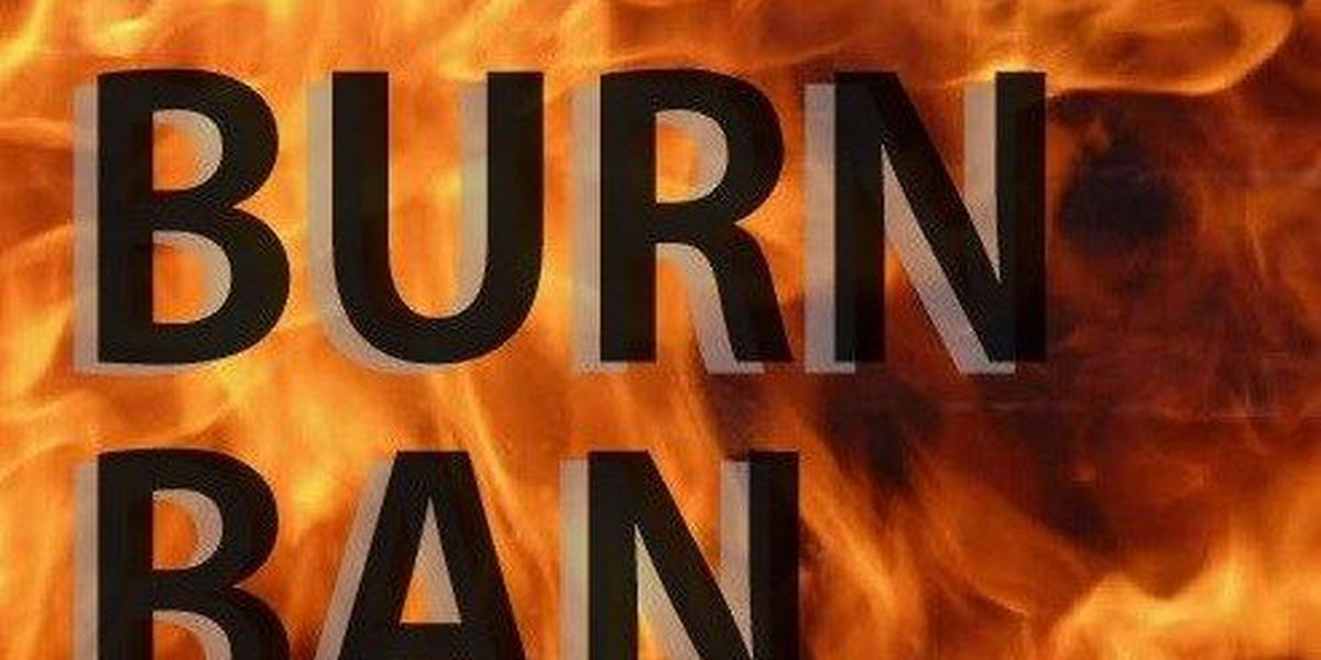 Burn ban issued for Marion County