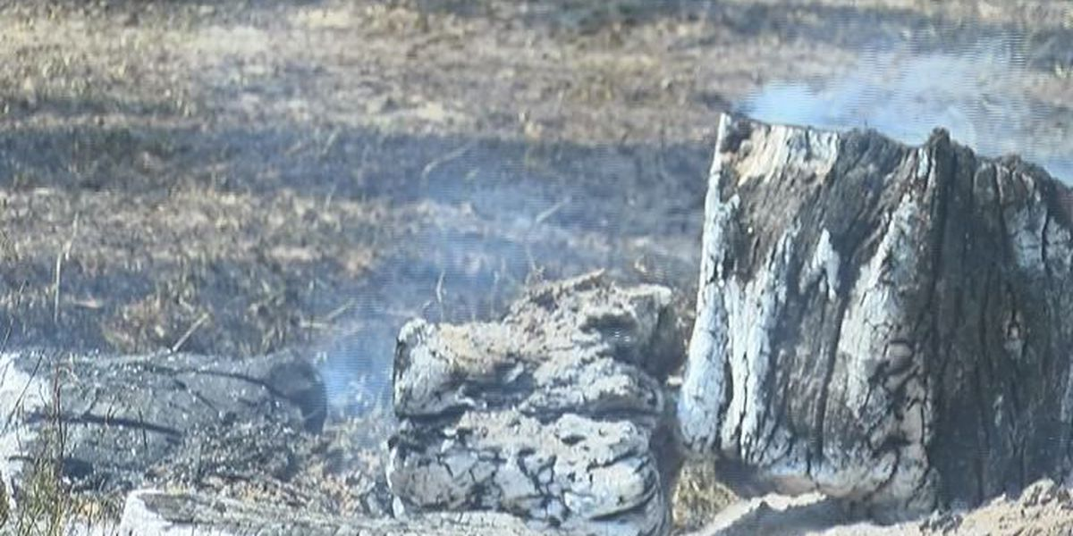 Burn bans a challenge for agricultural Hopkins County