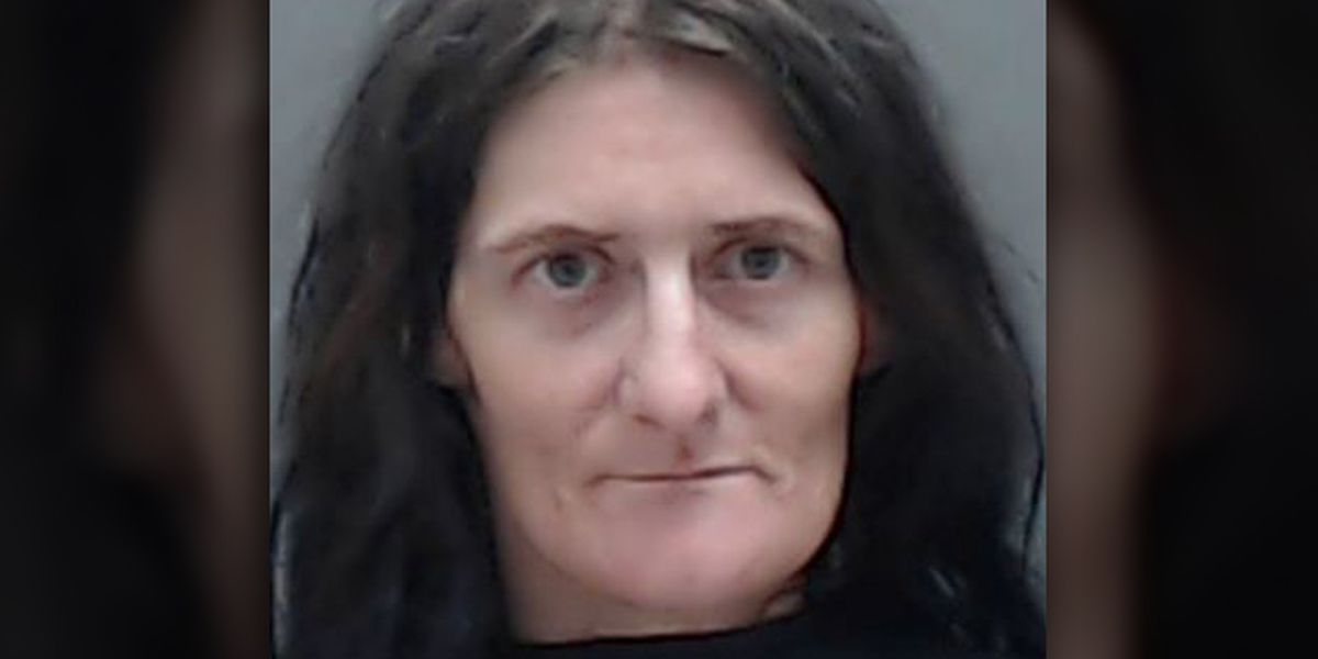 Sheriff's office: Woman who attempted to use Taser on deputy arrested
