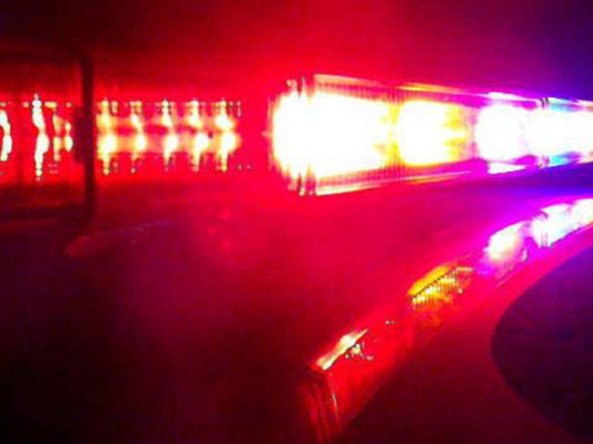 Child sex assault suspect kills self before Livingston police arrest