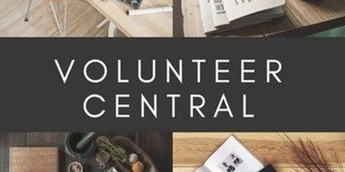 Volunteer Central: Opportunities for the week of May 25-June 1