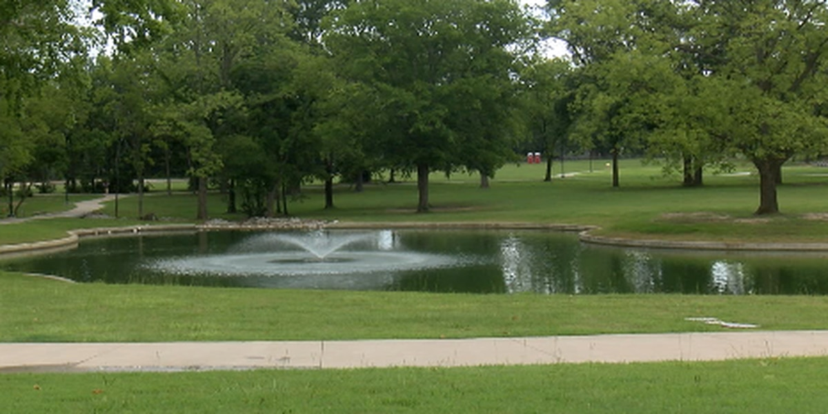 WEBXTRA: Lindale City Council to discuss playground improvements at Darden Harvest Park