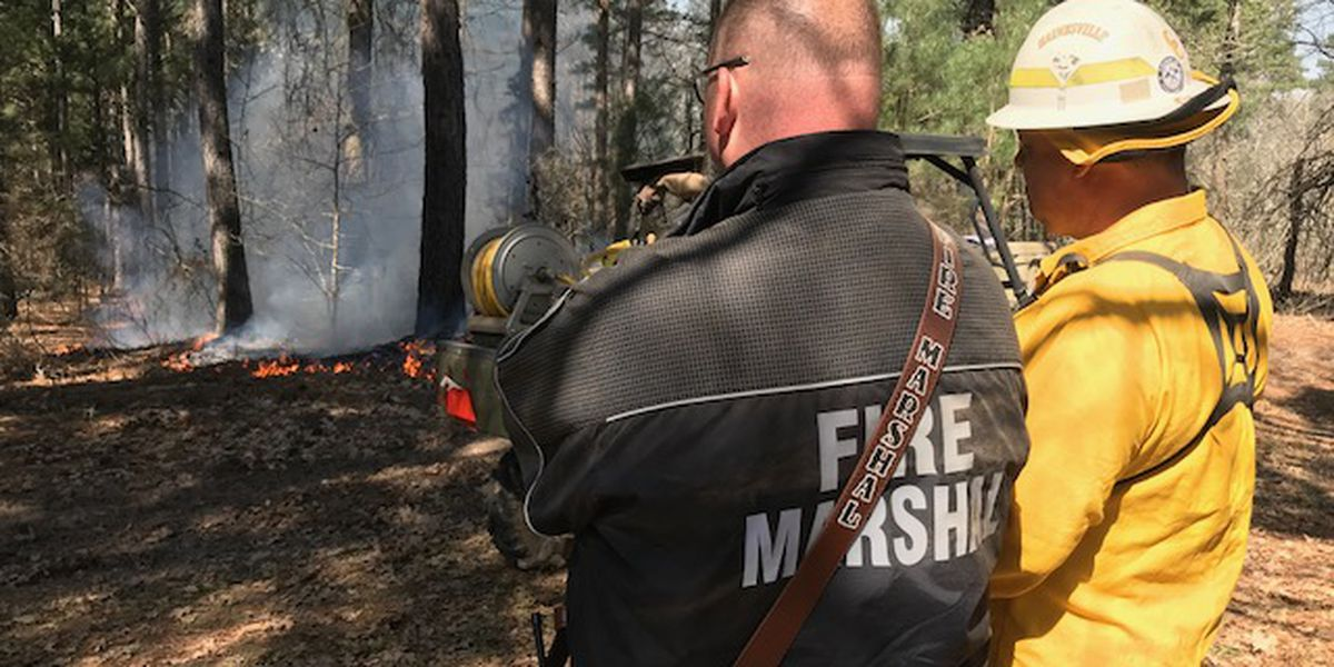 Firefighters from across Texas train during controlled burn in Wood County