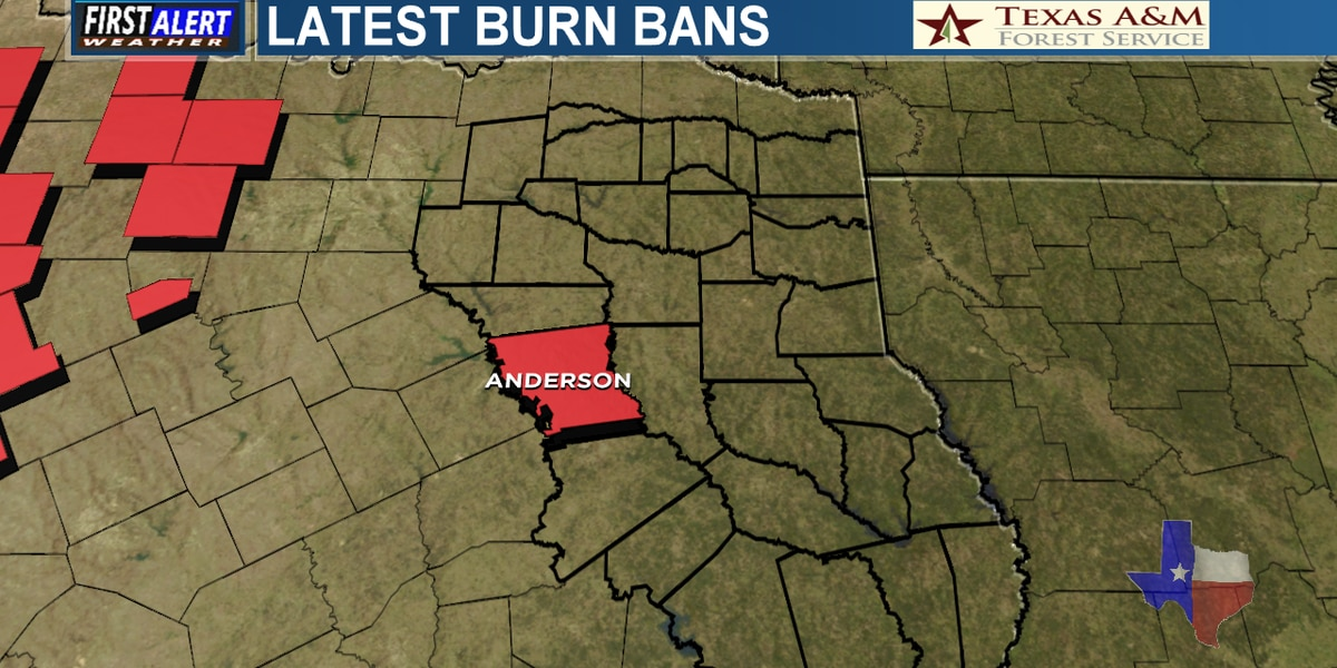 Burn ban issued for Anderson County