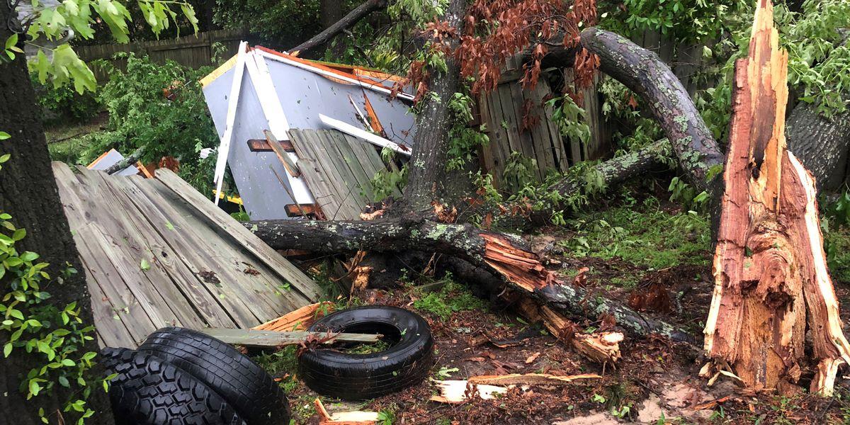 Chandler residents assess damage following storms