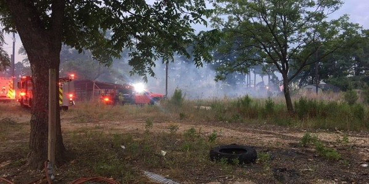 Pine trees catch fire around Smith County business