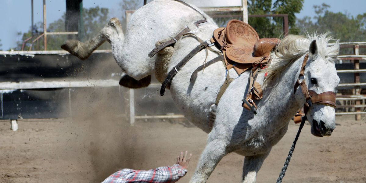 National Finals Rodeo back in the Texas saddle