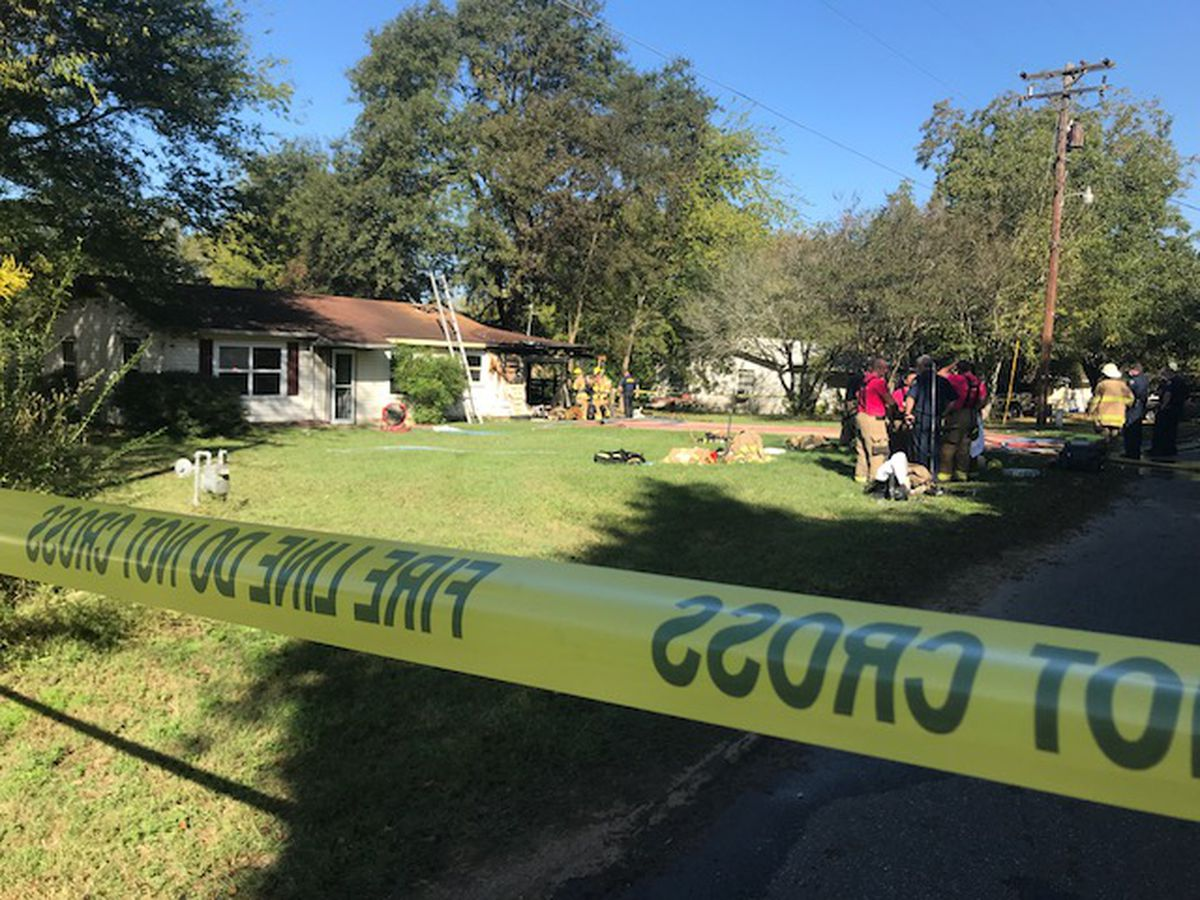 One person, 3 dogs dead in Longview fire