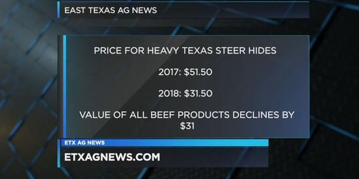 East Texas Ag Minute: Value of cow hides and beef by-products