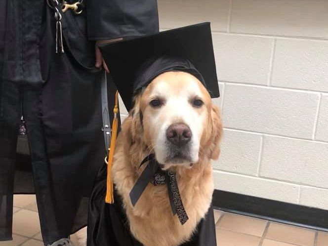 Service dog 'graduates' with owner at TJC