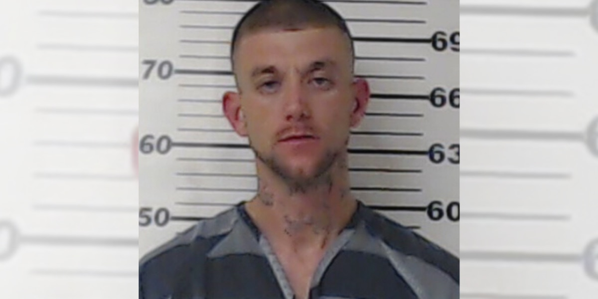 Alleged methamphetamine dealer arrested by Henderson County deputies