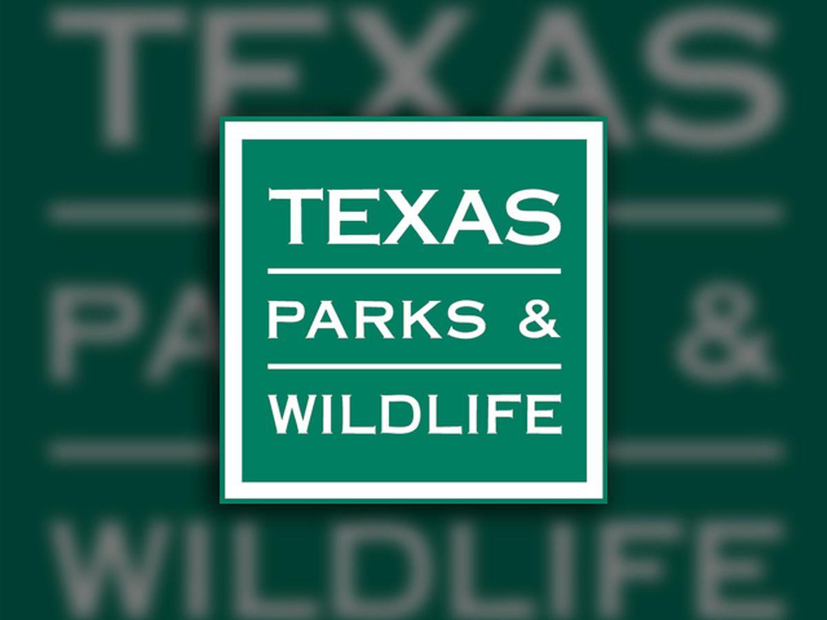 Weekly Texas Fishing Report (February 19)