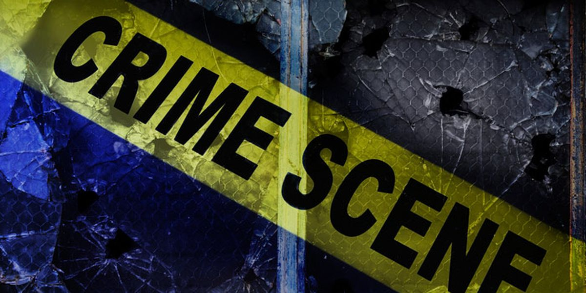 Palestine PD detectives investigating shooting incident that left man dead, boy wounded
