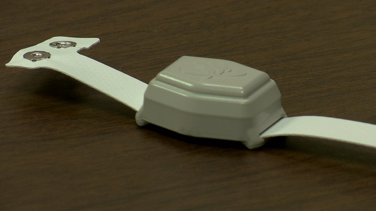 Project Lifesaver bracelet helps locate elderly quickly