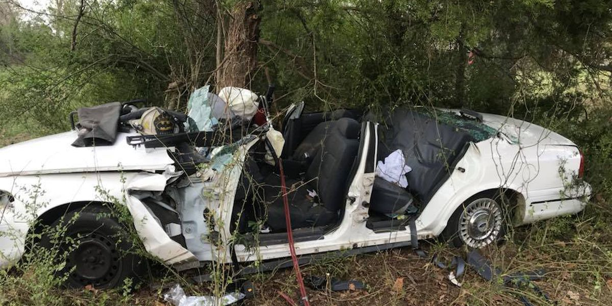 Multiple taken to hospital after vehicle crashes into tree