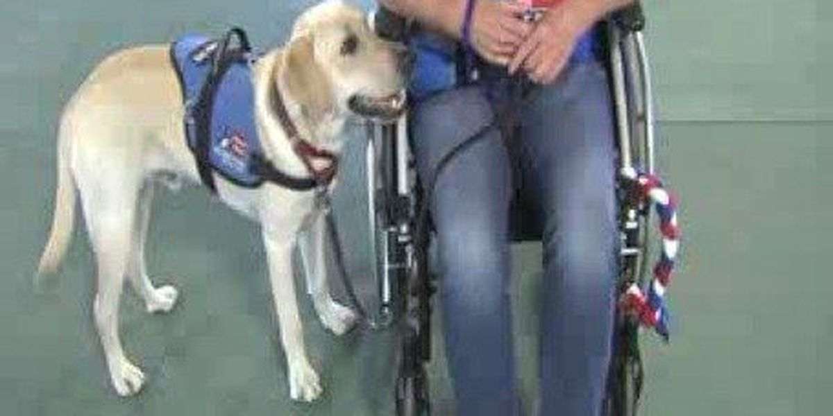 Proud of East Texas: Patriot Paws