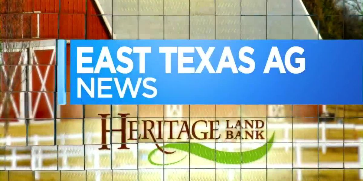 East Texas Ag News: Adding organic material to improve garden soil