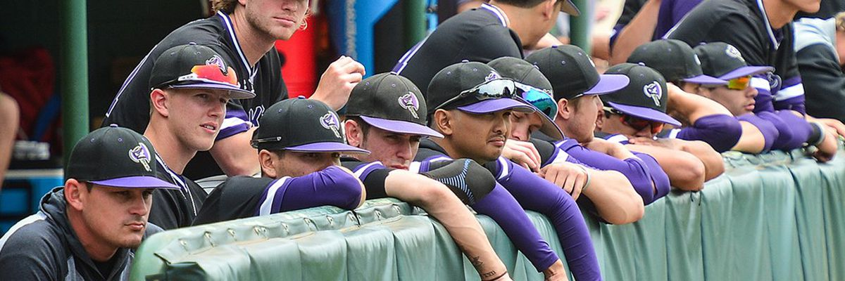 WEBXTRA: SFA releases 2019 baseball schedule