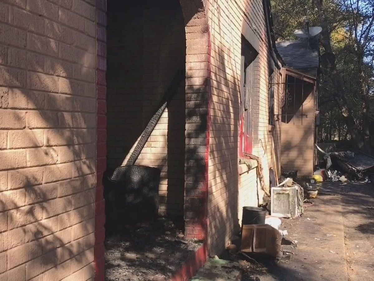 Several pets dead, home damaged in Longview fire