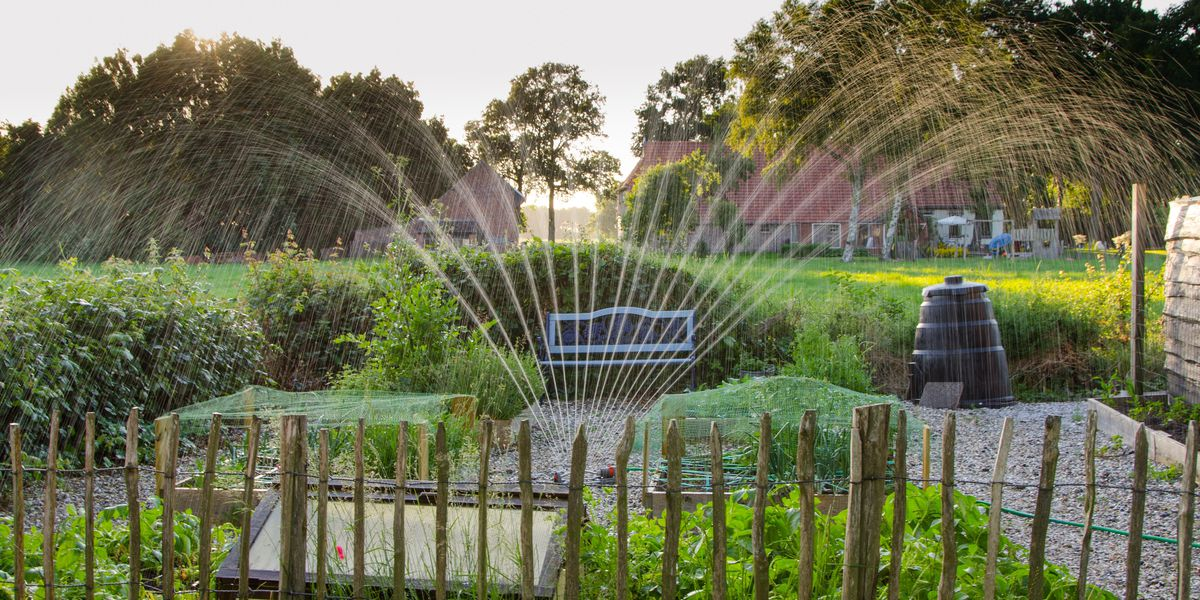 East Texas Ag News: Checking your landscape irrigation system