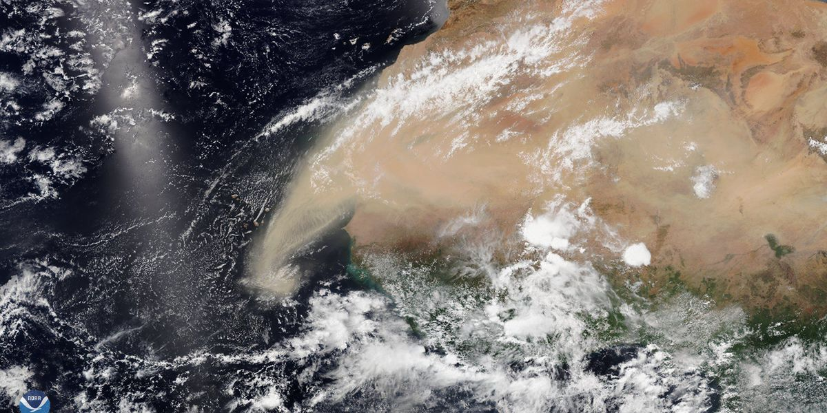 Dust from the Sahara Desert is heading for the US