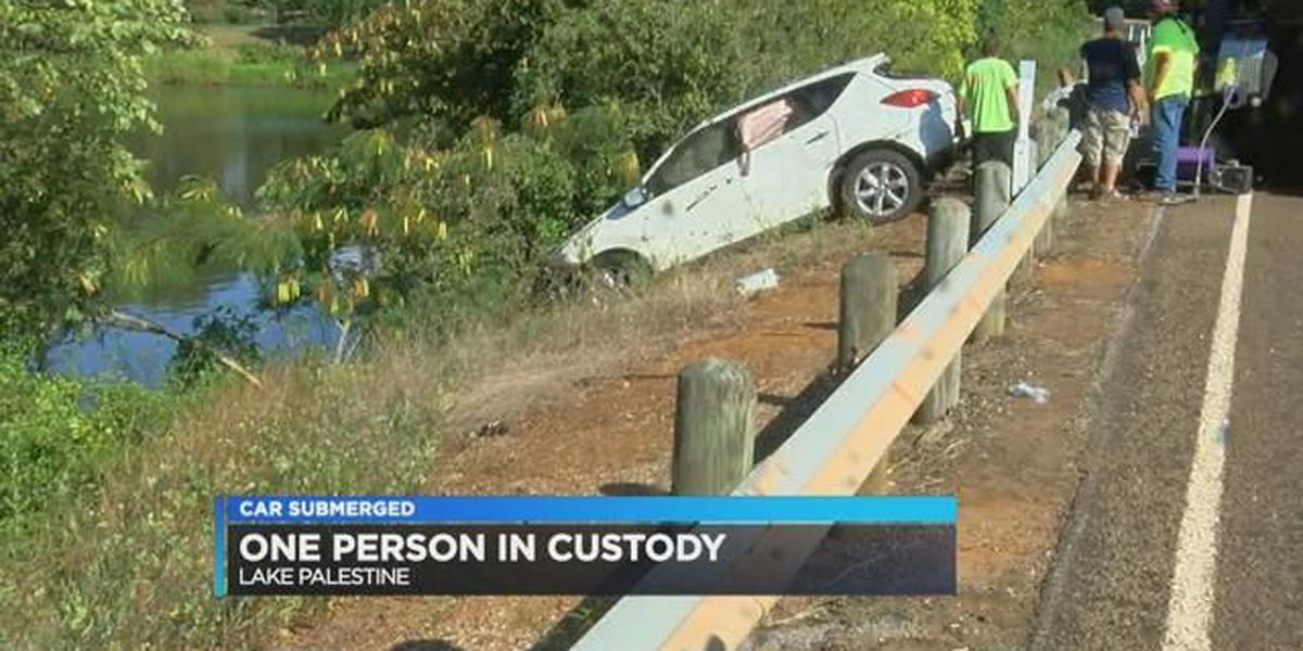DPS: Driver was texting when vehicle plunged into lake