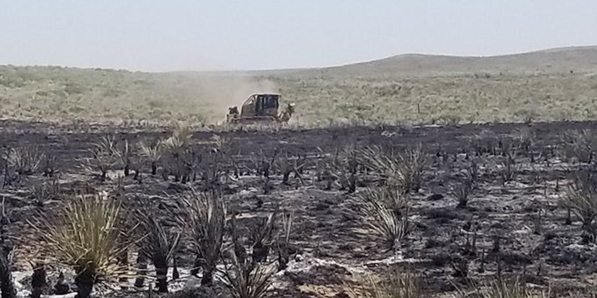 Grass fire in Hartley County estimated 315 acres, 100% contained