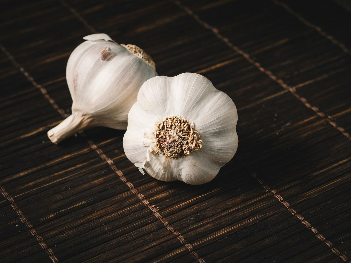 East Texas Ag News: Tips on planting garlic in your fall garden