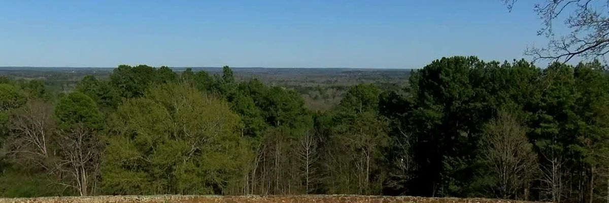 MARK IN TEXAS HISTORY: Love's Lookout in Cherokee County