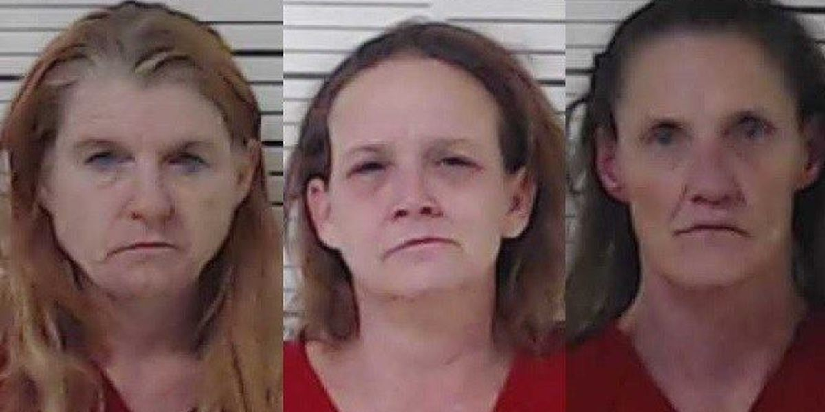 3 women arrested on drug charges in Henderson County