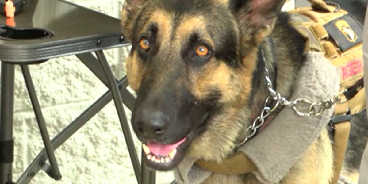 East Texas service dog trainer looking for facility to continue his work