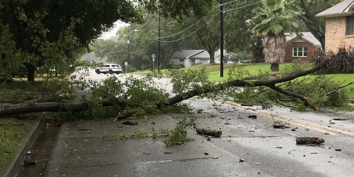 Storms lead to downed trees, power outages across East Texas